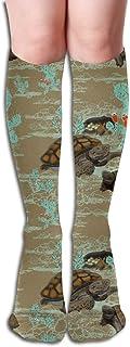 Tortuga del desierto en marrón y aguamarina por Salzanos Calcetines cómodos hasta la rodilla para adultos Calcetines para gimnasio 50 cm 19.7 pulgadas