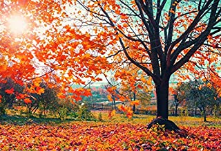 CSFOTO 7x5ft Autumn Scenery Backdrop Autumn Maple Leaf Photography Background Sunshine Fall Maple Leaf Landscape Autumnal Scenery Outdoor Party Holiday Trip Photo Booth Digital Studio Props Wallpaper