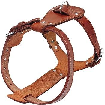 Beirui Genuine Leather Dog Harness Pet Training Walking Harness for Medium Large Dogs Pitbull Boxer Mastiff