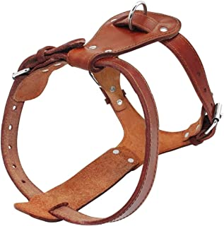 Best leather dog harness large Reviews