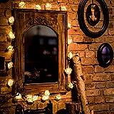 CozyHome LED Lichterkette Rosen weiß – 5m strombetrieben   20 Blumen warmweiß   Rosenlichterkette Strom   Tumblr Deko für: Mädchen Schlafzimmer, Hochzeit, Schminktisch   Rose Lichterketten mit Stecker - 7