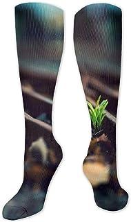 Amazon.es: Arco Iris - Calcetines / Calcetines y medias: Ropa