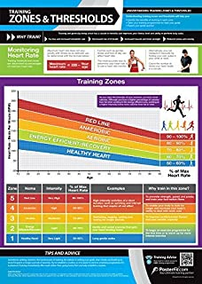 Training Zones & Thresholds Gym Poster | Laminated Gym & Home Poster | Free Online Video Training Support | Large Size 33