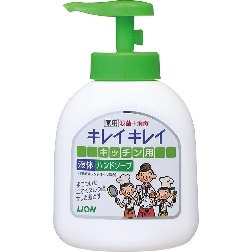 無駄だ提供ソロキレイキレイ 薬用 キッチンハンドソープ 本体ポンプ 250ml (医薬部外品)