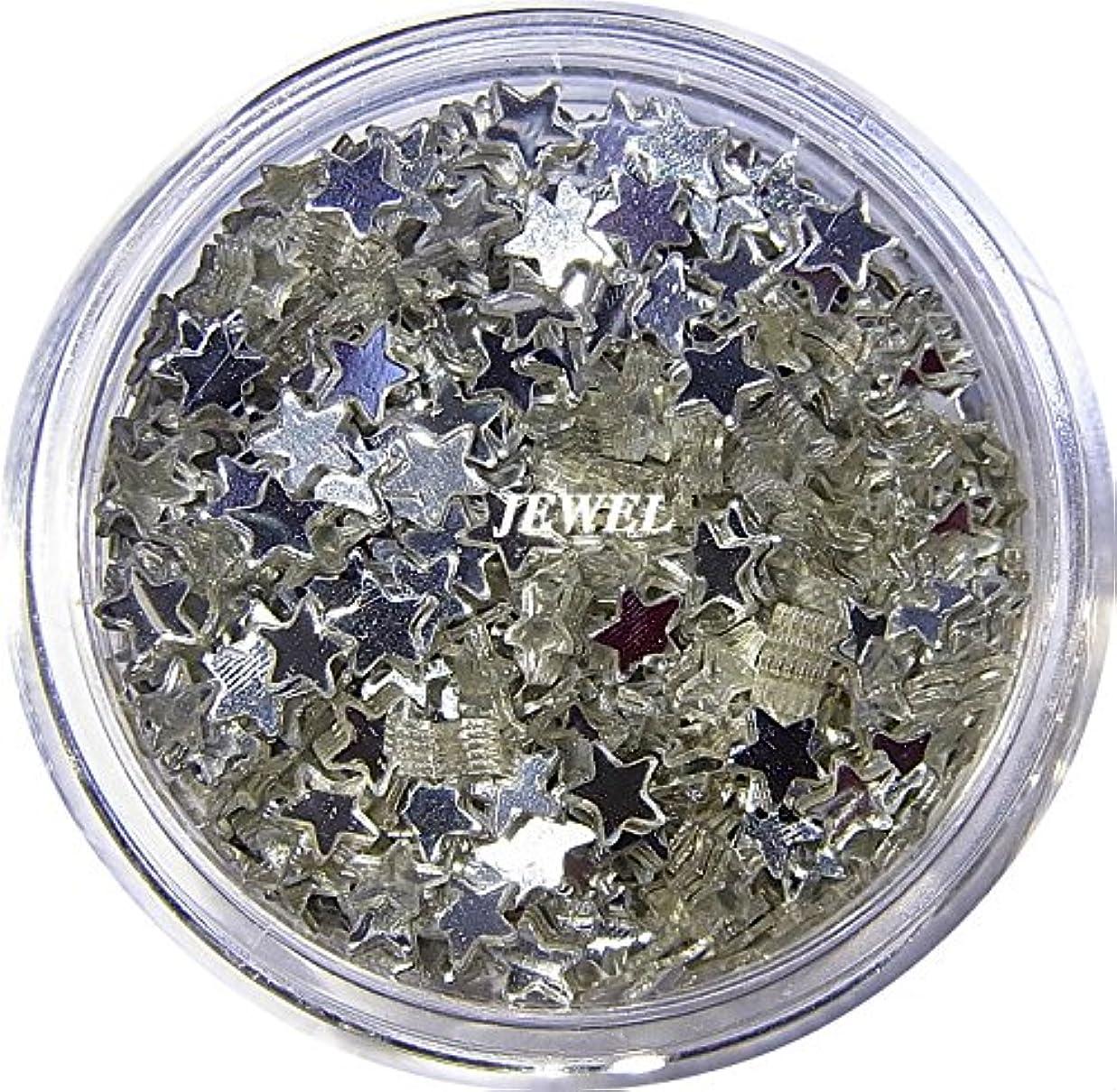自治的代表する人類【jewel】 星ホログラム 2.5mm シルバー スター 2g入り レジン&ネイル用