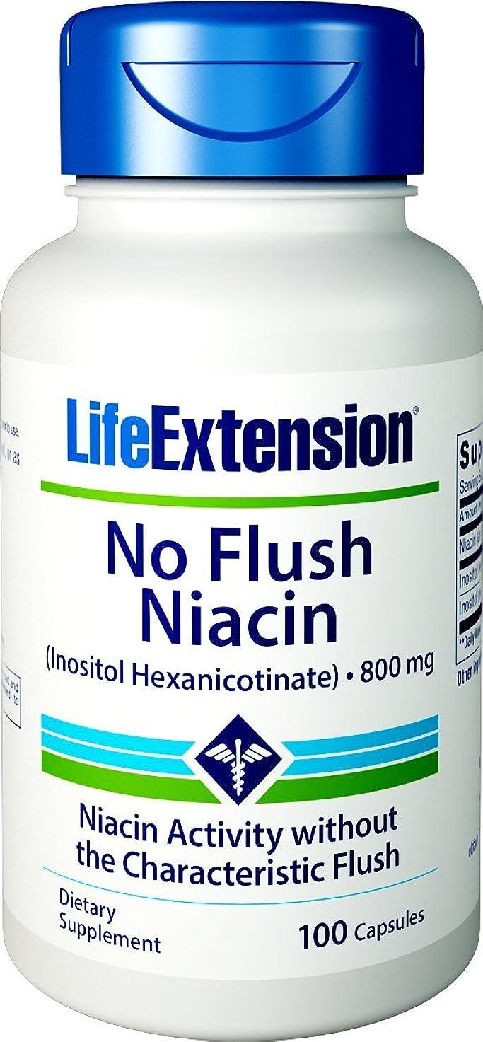 おなじみの自然公園表示ノンフラッシュナイアシン 800mg含有/1粒 100粒 海外直送品