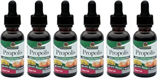 Nature's Answer Propolis, 1 Ounce (Value Pack of 6)