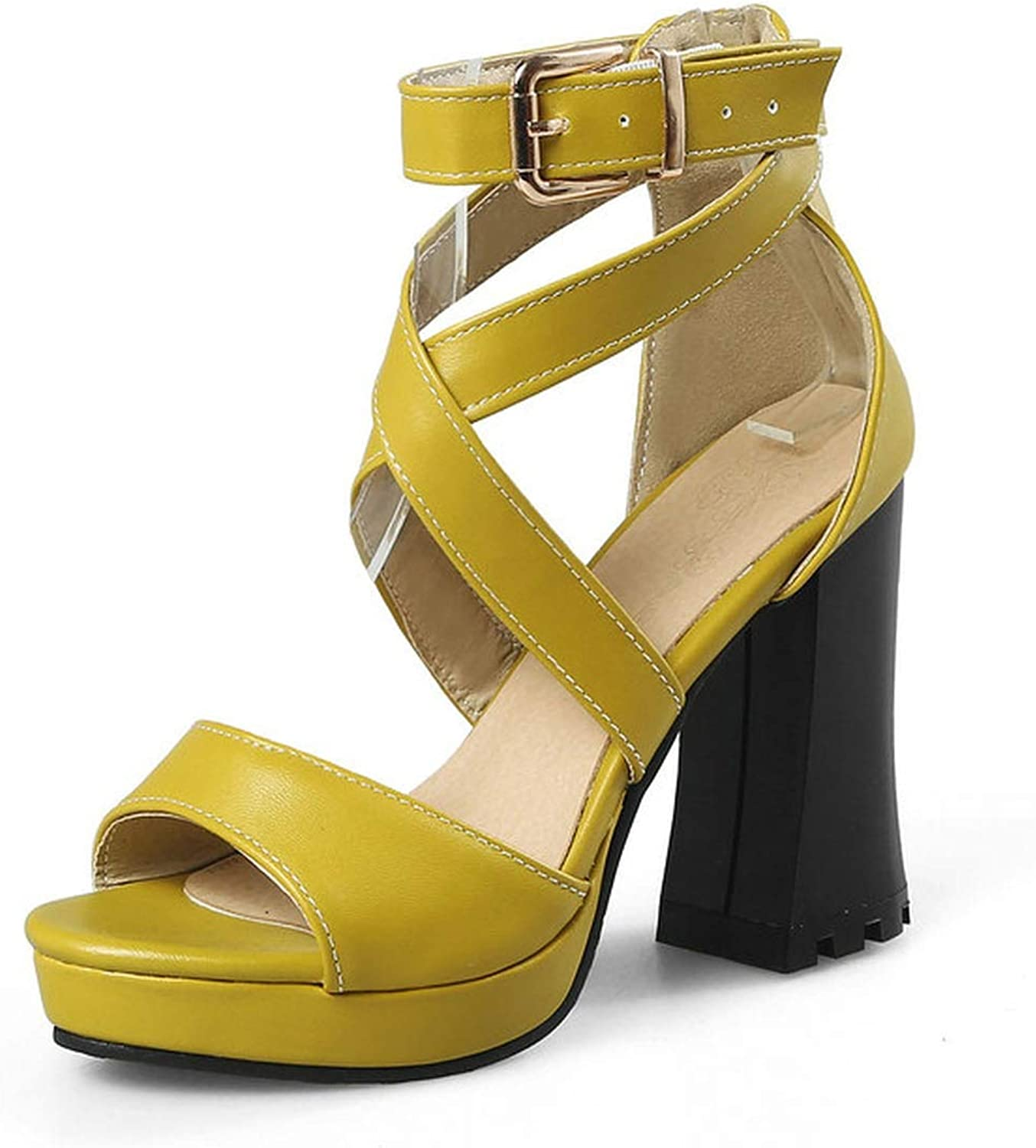Charismatic-Vibrators Women Sandals Pu Leather Square High Heel All Match Women shoes Platform Buckle Westrn Style Sandals