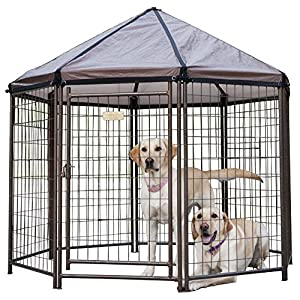 Advantek Pet Gazebo Outdoor Metal Dog Kennel with Reversible Cover, 5 Foot