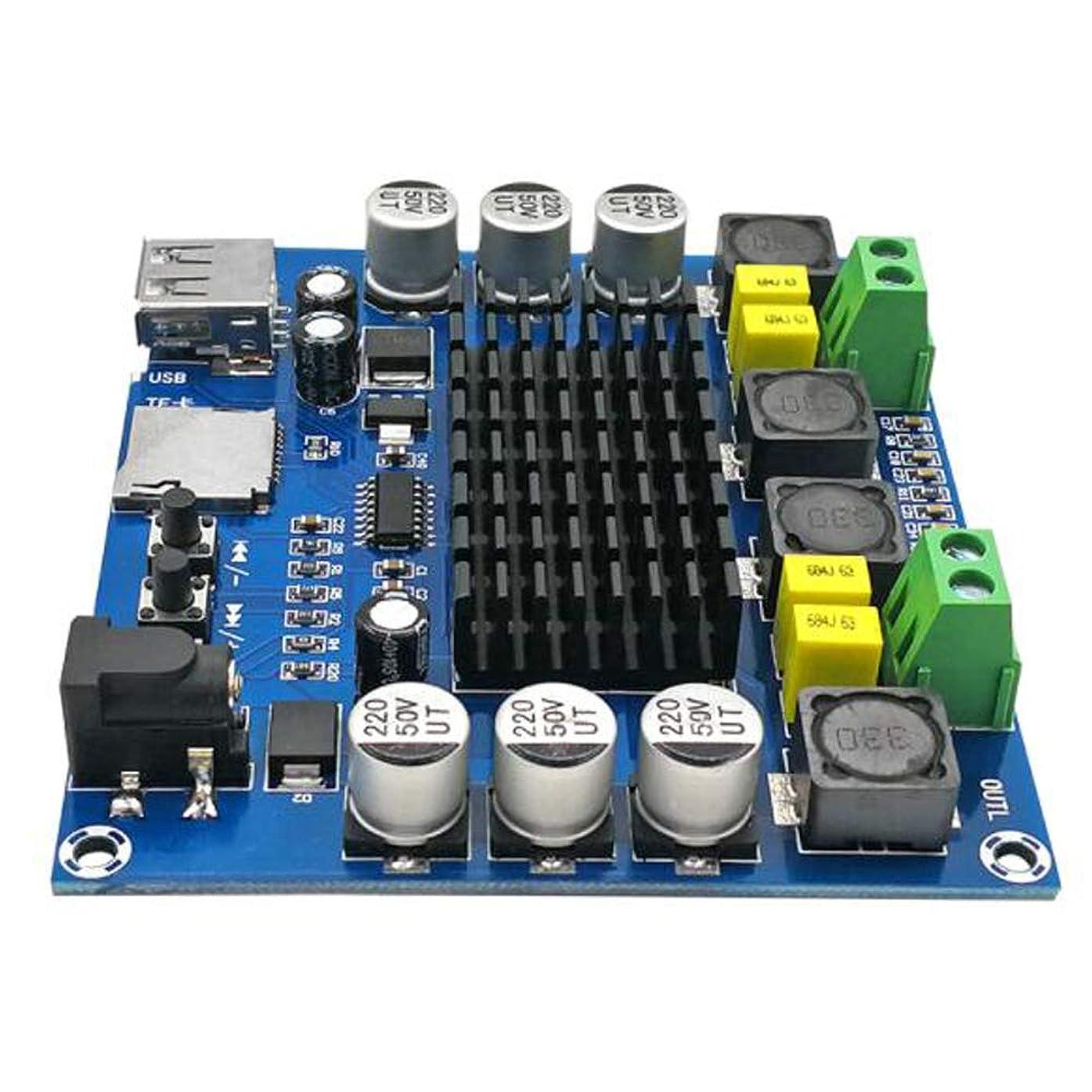 控える仮説横たわる12-24V 50W * 2ハイパワーデジタルパワーアンプボードUSBとTFデコーディング