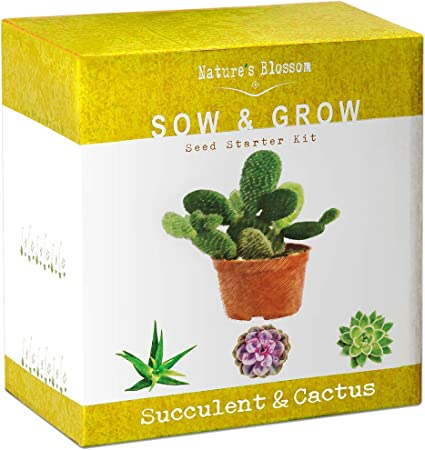 Nature's Blossom Succulent & Cactus Growing Kit. A Complete Set to Grow Succulents & Cacti Plants from Seed. Seeds, Pots, Soil, Labels & Gardening Guide Included. Indoor Garden Gift f...