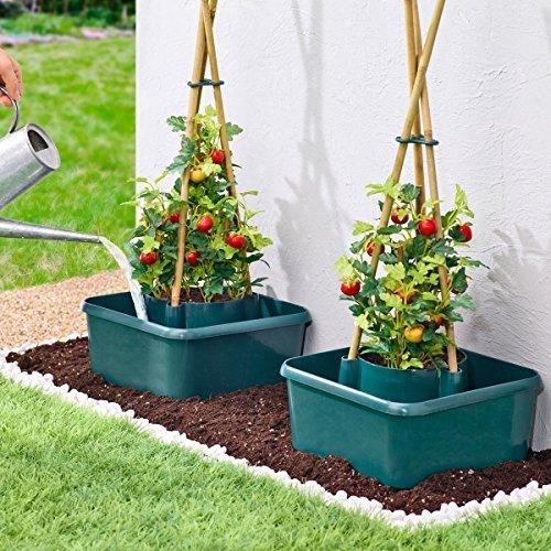 Unbekannt Tomaten-Anzuchthilfe, Tomatenbeet Tomaten-Bewässerung, Topf mit Wasserbehälter, Tomaten-Wasserversorgung, Kunststoff, 27 x 17 x 15 cm