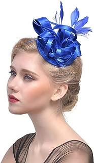 YSJOY Accessory Womens Fascinator Hair Clip Derby Hat Feather Wedding Cocktail Party Headwear