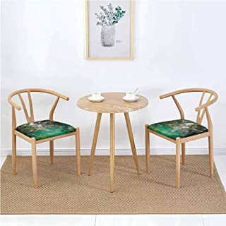 Landscape Detachable Dining Table Chair Cushion Mountain Lake Lago di Braies in Italy Mountain View with Fresh Pine Trees Non-Slip Teal Green Ivory W23.5