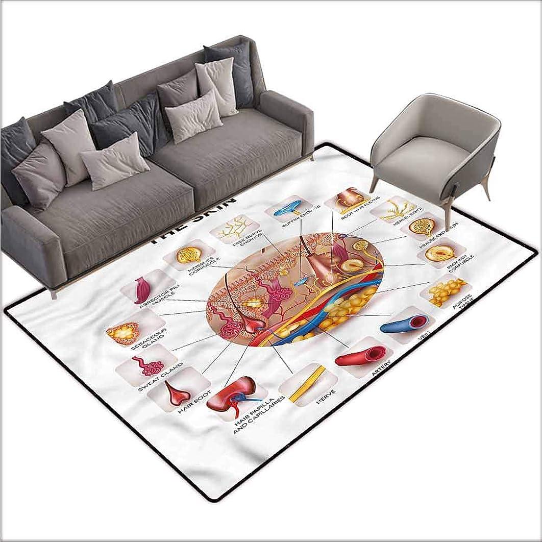Floor Mat for Toilet Non Slip Educational,Skin Anatomy Veins 80