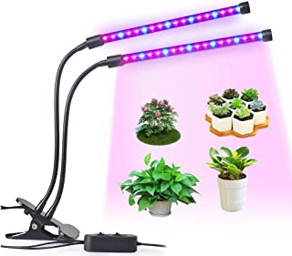 Best grow lights for mini greenhouse Reviews