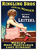 Ringling Bros - Dainty Miss Leitzel Vintage Poster (artist:) USA c. 1918 (16x24 Giclee Gallery Print, Wall Decor Travel Poster)