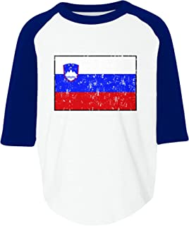 Amdesco Slovenia Flag Slovene Toddler Raglan Shirt