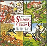 Essential Seasonal Birdsong Sound Effects