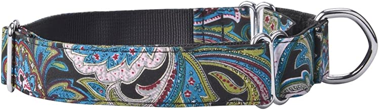 EXPAWLORER Martingale Collars for Dogs Adjustable Training Heavy Duty Nylon Collar for Walking Hiking Running with Pattern for Medium to Large Dog