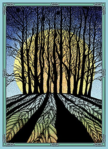 """Tree-Free Greetings Solstice Cards and Envelopes, Set of 10, 5 x 7"""", Winter Solstice (HB93353)"""