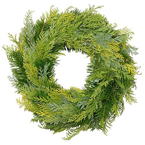 Kölle Bio Adventskranz frisch, echte Tannenzweige, Nordmann-Mixkranz, Weihnachten, 35 cm Ø, halbrund gebunden von unseren Gärtnern