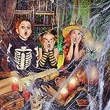 CNXUS Decoraciones de Halloween, 2 Juegos de Telaraña y 12 arañas Negras de plástico, Decoraciones de Accesorios de Halloween para Puerta Entrada Jardín Fiesta