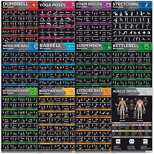 12-Pack Laminated Large Workout Poster Set - Perfect Workout Posters For Home Gym - Exercise Charts...