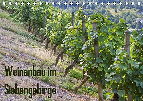 Weinanbau im Siebengebirge (Tischkalender 2020 DIN A5 quer): Ein Jahr im Weinberg (Monatskalender, 14 Seiten ) (CALVENDO Natur)