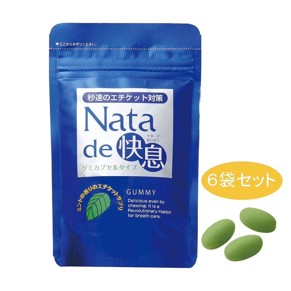 解く広い骨折ナタデ快息 ミントの香り 6袋セット