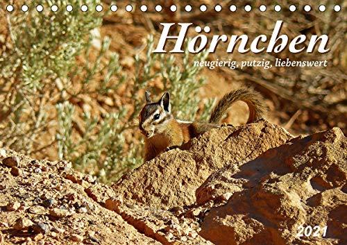 Hörnchen - neugierig, putzig, liebenswert (Tischkalender 2021 DIN A5 quer)