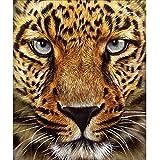 DIY 5D Diamant Gemälde Kit,Malen nach Zahlen,DIY 5D Diamant Painting Kraftvoller Tiger Full Diamond Gepard Stickerei Strass Kreuzstich Kunst Craft Supply für Home Wall Decor 30x35cm