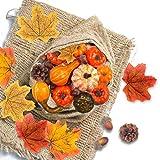 VGOODALL Künstliche Kürbisse Set, 50 Stück Seidenahornblatt Eicheln Tannenzapfen Kürbis für Herbstdekoration Halloween
