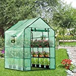 Vivosun 57x57x77-inch mini walk in green house with window and anchor plant garden hot house 2 tiers 8 shelves 10 multi-shelves, large space- crafted with 8 wired shelves, overall dimension:57x57x77-inch, our vivosun green house is large enough for starting seed, sprouting young plants, blooming flowers and cultivating fresh vegetables; 3 tiers and different height between each shelf provide a possibility to grow both small and large plants side by side roll-up entrance & windows- zippered roll-up entrance at the front provides an easily access to the greenhouse and a bigger operating space; 2 side windows bring a better air circulation of the green house, even if in hot weather, your lovely plants can breath fresh air; and the custom meshes on the window effectively isolate the pests from harming plants high-quality & long life time pe cover- our vivosun greenhouse is double-stranded edge banding, making the cover more tough and more durable; thanks to the anti-cold agent added in the cover, its lifetime is 3 months more than usual cover; in addition, our high-quality pe cover can prevent the harm from uv and bad weather but offering the best solar performance, which will nourish your plants very well