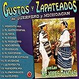 Gustos y Zapateados De Guerrero y Michoacán, Vol. 1 (Con las Mejores Bandas)