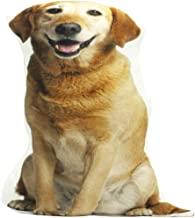 Best yellow lab pillow Reviews