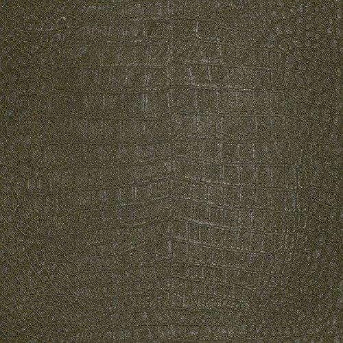 African Queen Wallpaper Collection 474121