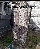まずはお墓から先祖をさがそう: 戒名、形、紀年から近世墓にアプローチ
