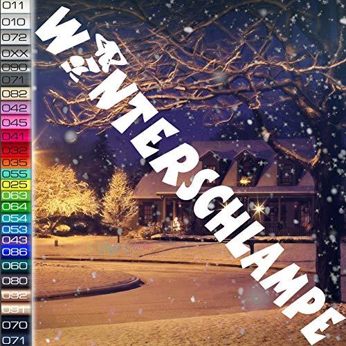 Winteraufkleber Winterschlampe Winterauto Aufkleber Schnee Heckscheibe Sticker Frontscheibe Allrad Woman Gril Sexy Lady Winterwagen Snow SKI Apres