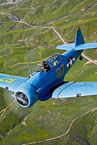 North American T-6 Texan in flight over Chino, California Poster Print (22 x 34)
