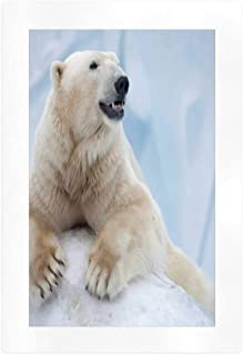 YOLIYANA Zoo Art Print,Portrait of Large White Polar Bear on Ice Claws Antarctica North Outdoors Decorative for Indoor,16