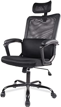 SMUGDESK Office Computer Chair Ergonomic Lumbar Support/Adjustable Headrest/Armrest and Wheels/Mesh High Back/Swivel Rolling, Black