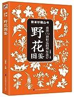 野花图鉴(揭开179种野花的神秘面纱)/图鉴珍藏丛书