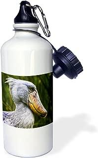 3dRose wb_132127_1 Shoebill Bird, Entebbe, Uganda, Africa-Af48 Mzw0002-Martin Zwick Sports Water Bottle, 21 oz, White