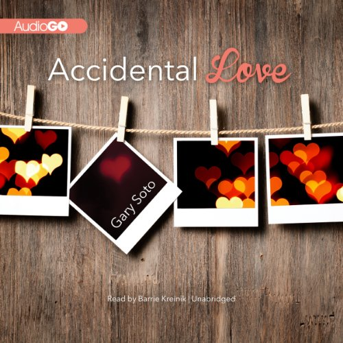 Accidental Love audiobook cover art