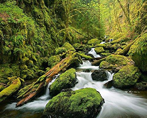Green Canyon Cascades – Papier Peint Intissé Mini Photo Wall Paper 200 x 160 cm – 4 Pièces clos sont une Contenu du Colle et une klebea nleitung. Fabriqué en Allemagne.