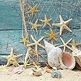 TOVAGLIOLI CARTA STARFISH MARE