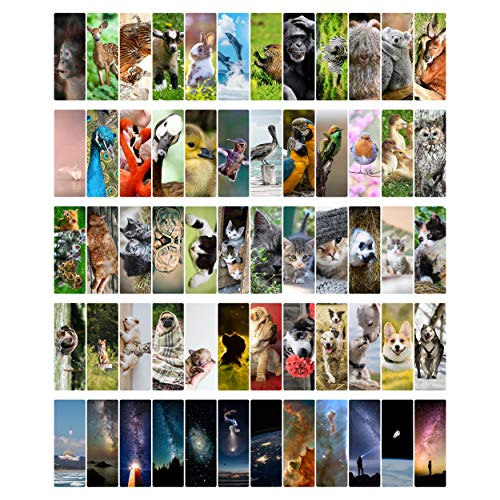 Livin Harmony Cool Kids Bookmarks Set of 60 || Cute Animal Bookmarks for Book Lovers | Unique Book Marks for Kids, Boys, Women, Girls | Bulk Bookmarkers for Party Favors | Book Club Gifts for Students