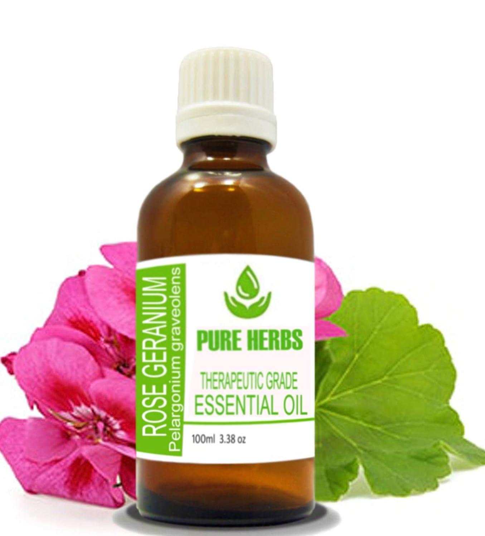 Spasm price Rose Geranium Pure Natural Therapeutic Dealing full price reduction Grave Grade Pelargonium