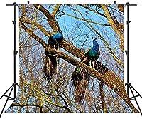 木の写真の背景にHD6x6ft孔雀素朴な大きな木の写真の背景自画像LYST650